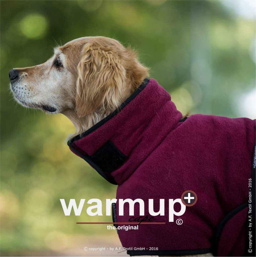 header warmup classic bordeaux 1