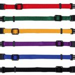 verstellbare Welpenhalsbnder Trixie Welpen Hunde Halsband 12 Farben 2 Gren 253141697212 3